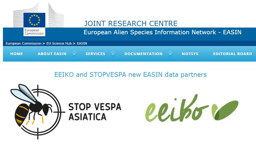 LIFE STOPVESPA diventa data-partner di EASIN – European Alien Species Information Network