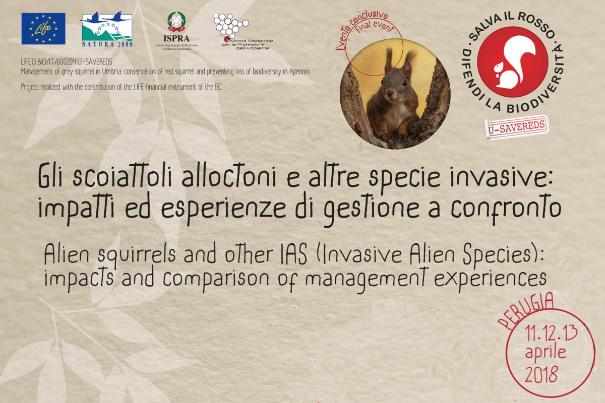 Perugia, 11th - 13th of April: the workshop and symposium about Invasive Alien Species, with also a talk on Vespa velutina.